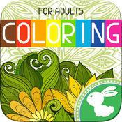 成人 着色 书 颜色 颜料 治疗 页面 1