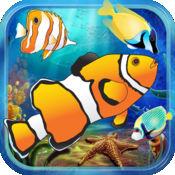 快乐水族馆的鱼...