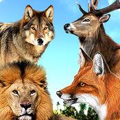 野生 动物 狩猎 ...
