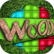 木 块 难题 游戏 为 孩子们 和 成人 1