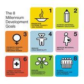 千年发展目标: 10