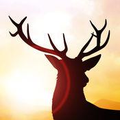 鹿亚军 - 逃离猎人游戏 1