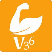 V36平台 1