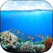 深蓝色的大海壁纸 - 美丽的水下高清背景和锁屏图片
