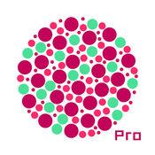 色盲测试 Pro - 专业色盲色弱测试驾考助手 1