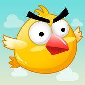 疯狂的小鸟 - 飞...