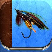若虫 而 湿飞: 钓鱼技巧 鱼饵 图案 1