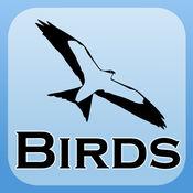 2000 鸟类。包括医学和解剖学的参考。 10
