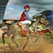 疯狂 赛马 免费 . 魔法 骑士 骑马 模拟器 游戏 1.1.1