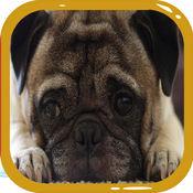 狗拼圖 - 家庭活動 1