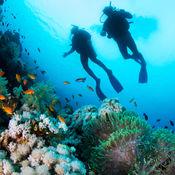 潜水 - 神奇的海底世界 2