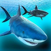 海洋 鲨鱼 冒险 ...