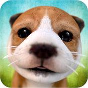 狗狗 Dog Simulator 2.2.3