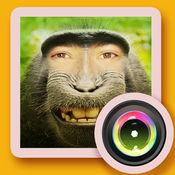 天天朋友圈社交搞笑换脸相机— 趣味变脸整蛊特效编辑软件