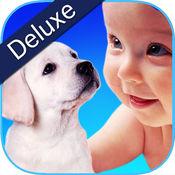 ZOOLA Animals Deluxe  3.2.2