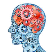 脑游戏 (Brain G...