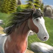 骑士 英雄 赛马 ...