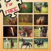 12马动画益智的免费游戏 1