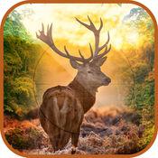 3D终极鹿的猎人 - 在多个狩猎季节狩猎雄鹿成为最好的猎鹿