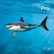 宝宝识海洋动物专业版 – 婴幼儿早教启蒙认知事物应用 1