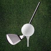 高尔夫训练 - 专业教练学院 1.1