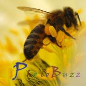 PhotoBuzz for iPad - 美图分享社区 1