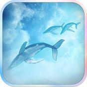 滤镜相机 - 飞鱼特效 & 鲨鱼滤镜 2.4.1