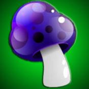 捡蘑菇 2