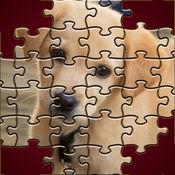小狗拼图 - 孩子们的可爱的宠物游戏集中精力来获得原始照