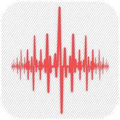 振动计  地震检测器 1.2