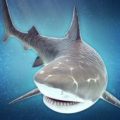鲨鱼 模拟器 游戏 生存 比赛 - 经典 酷跑 食人鱼 3d 街机