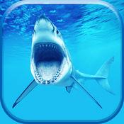 鲨鱼壁纸 和 锁屏主题 – 皮条客你的屏幕 同 凉爽的背景 1