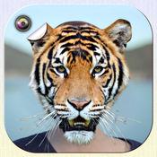 动物脸 更改 照片编辑器 而 有趣的 贴纸 1.1
