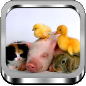 拼图小动物 1