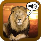 声音游戏野生动物照片 1