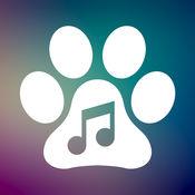 平靜的音樂為狗焦慮和療法為寵物 1