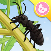 蚂蚁 - 昆虫世界 有趣的儿童互动绘本故事书