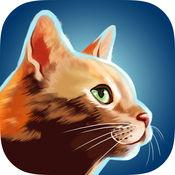 Cat Run - 奔跑中的猫咪 1