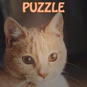 快乐猫合并 _ 可爱的猫咪盛宴,超级简单新2048 3.2