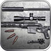 超远狙击: MSR R...