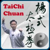 杨式太极拳教程...