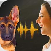狗语音翻译模拟器 1.1