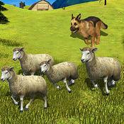 绵羊犬  训练放牧犬模拟器 1.0.1