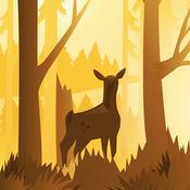 Wildfulness 2 - 静谧的大自然场景和声音 1.3