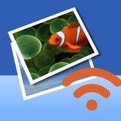 无线照片传送器 - 相册图片视频批量发送、接收、共享