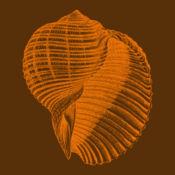 Ecofip Simulateur Girardin 1.7