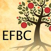 EFBC 1.53