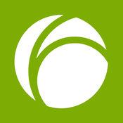 Fidor Bank - Kontostandsanzeige