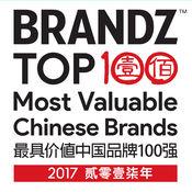 BrandZ VR 2017