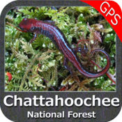 Chattahoochee National Forest  4.7